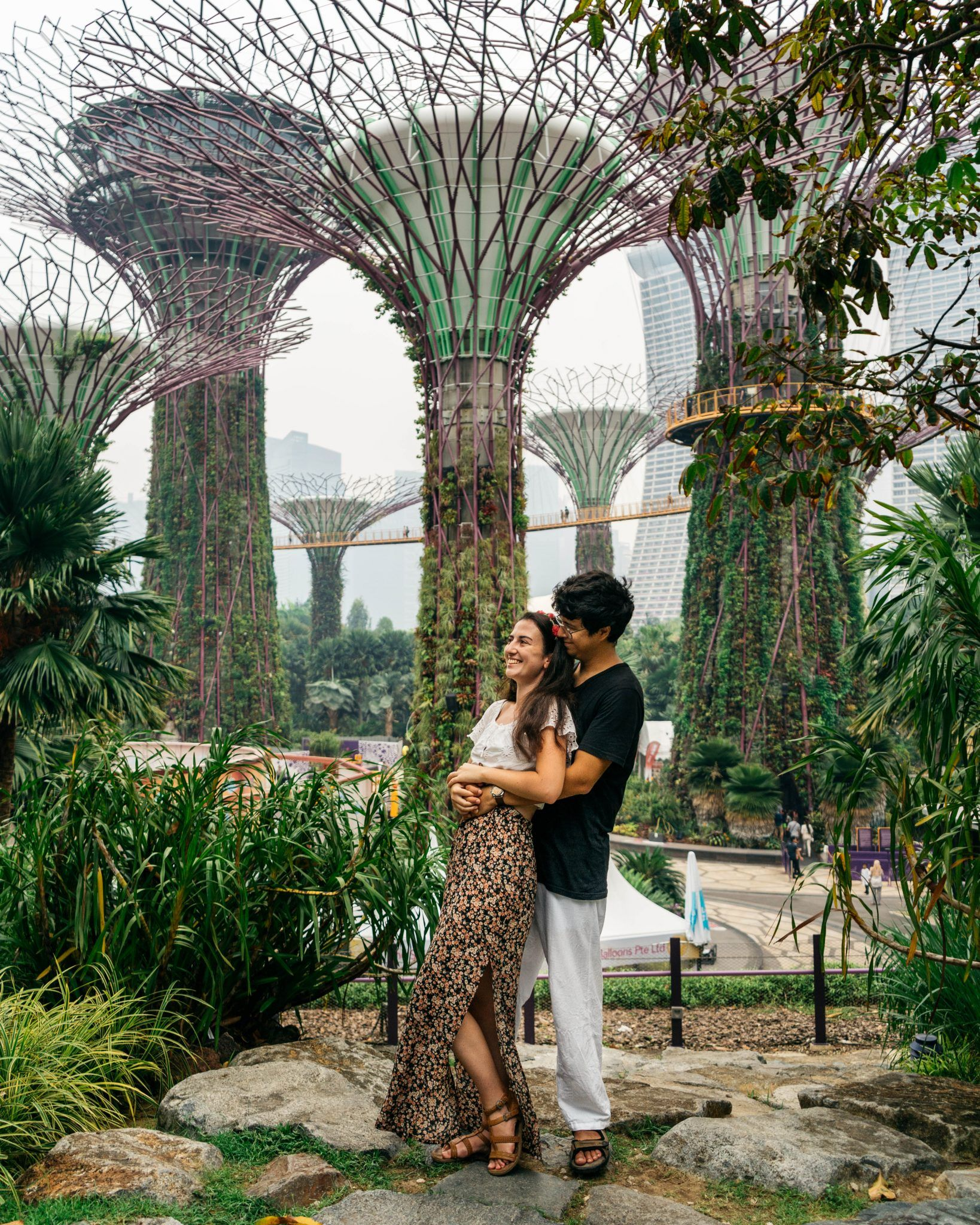 Guide to Gardens by the Bay, Singapore DeerTraveler in 2020