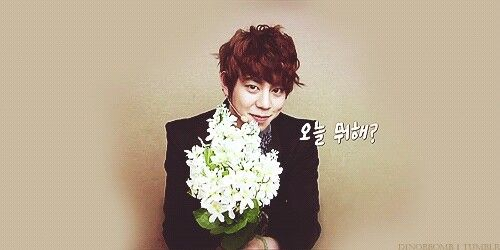 Boy Over Flower
