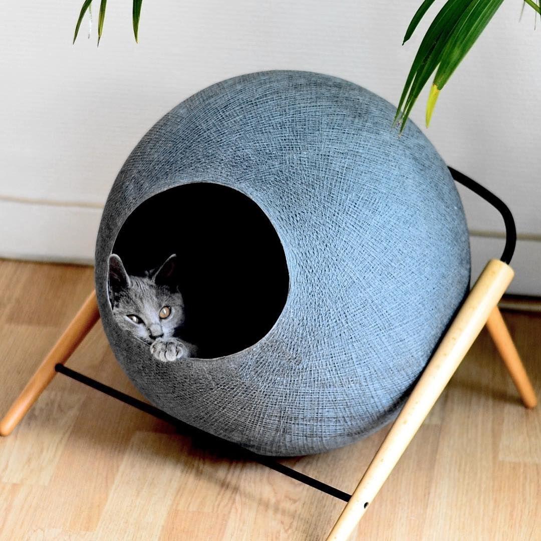 Kattenmand van @Meyou_Paris