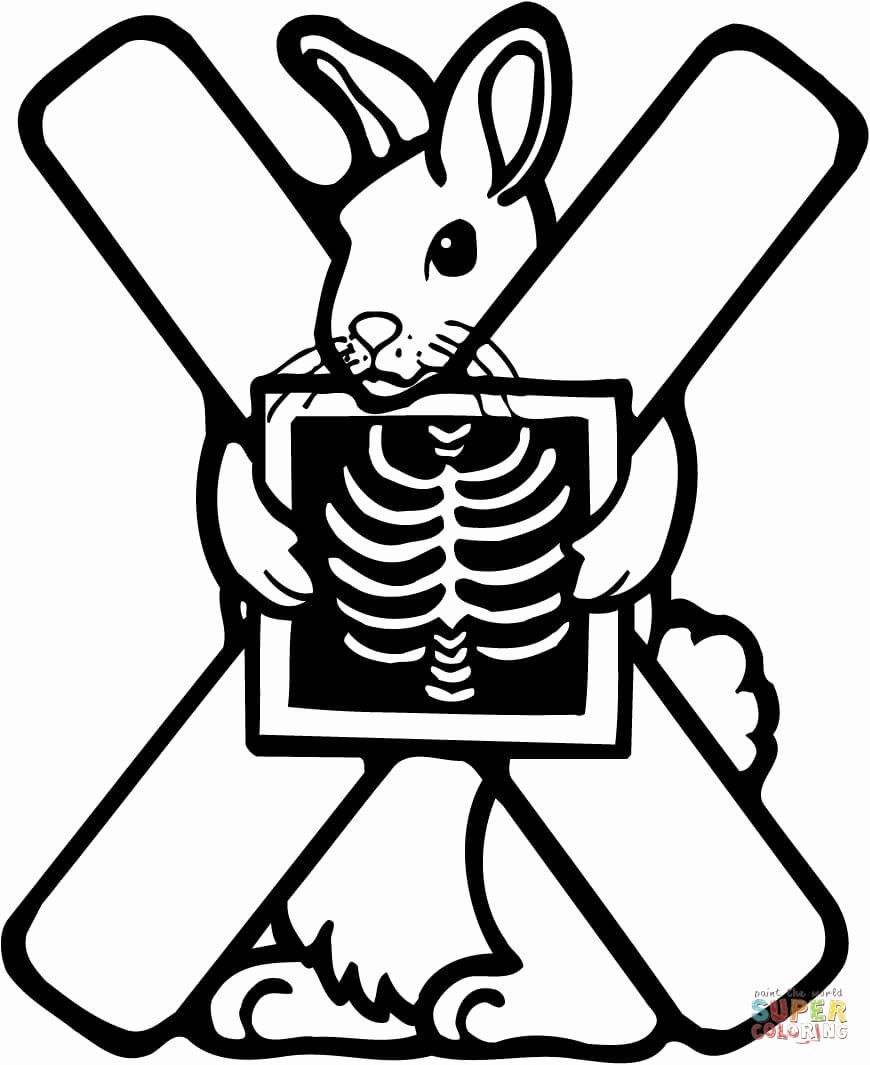 X Ray Coloring Page Luxury Letter X Is For X Ray Coloring Page In 2020 Kindergarten Coloring Pages Alphabet Coloring Pages Halloween Coloring Pages
