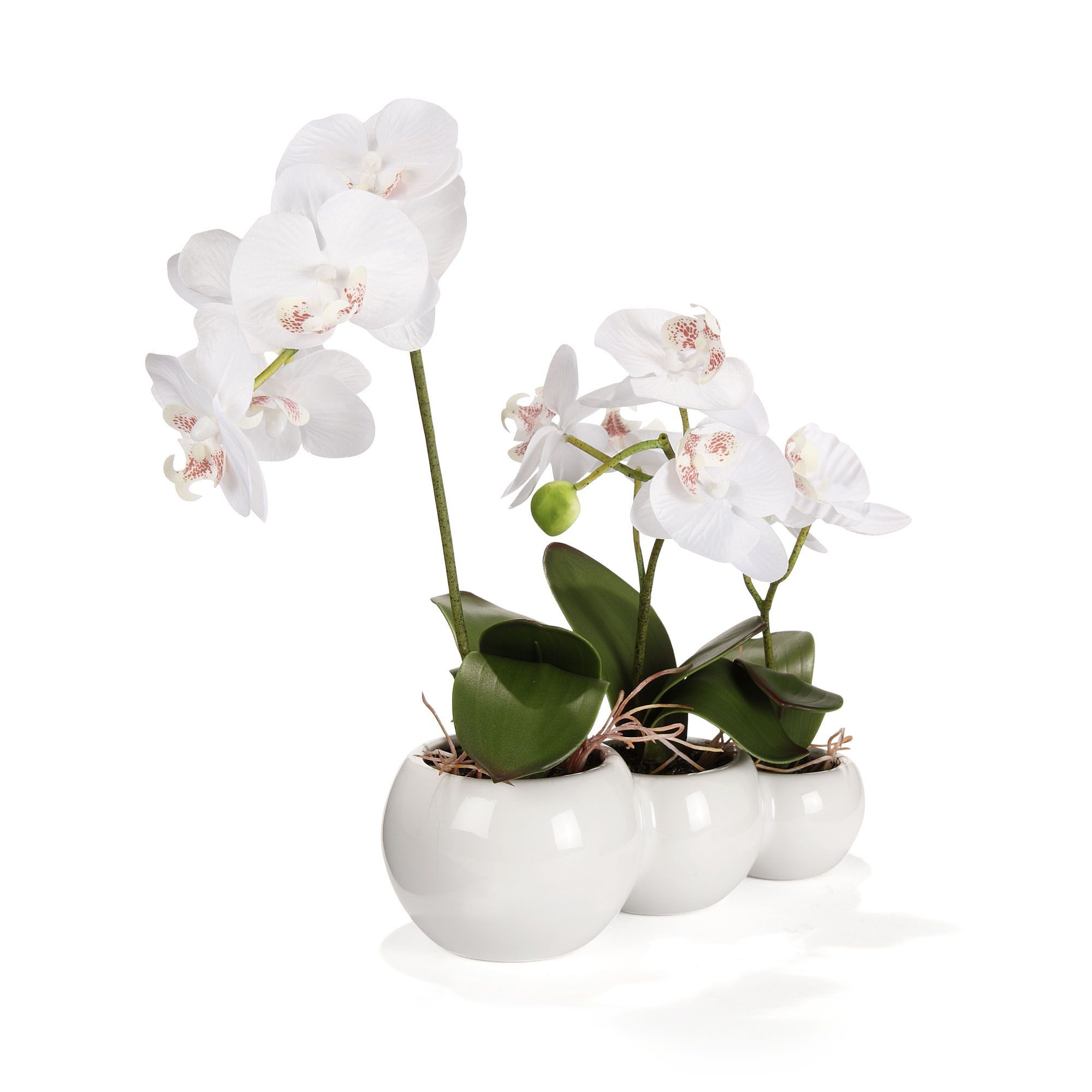 Orchid e artificielle 3 branches blanc orchid e les for Objets decoratifs salon