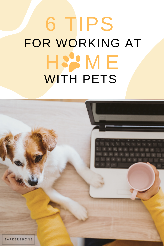 Pin On Working Like A Dog