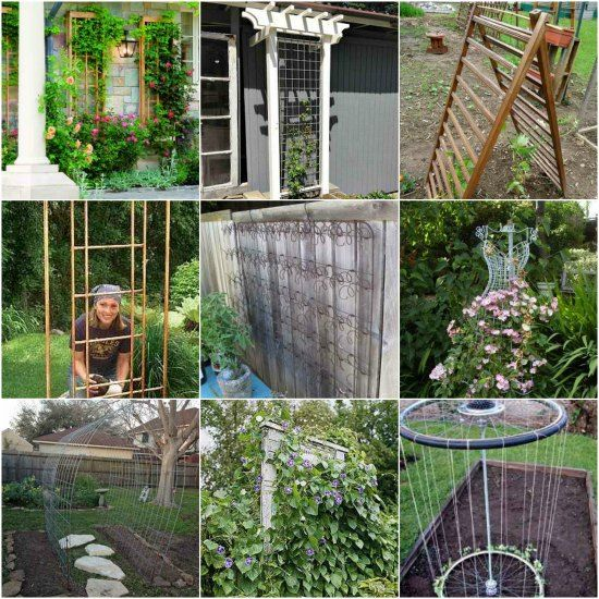 7+ Awesome DIY Garden Trellis Projects for your Home | Gardens ...