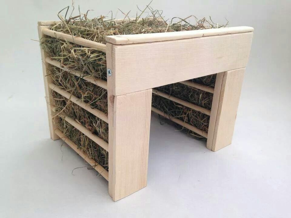 Adding A Hay House In Your Bunny39s Pen Can Be An Extra Fun