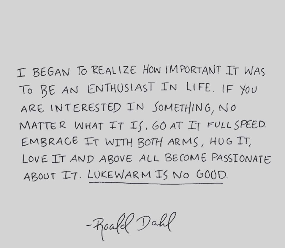 Ups Quotes 14 Roald Dahl Quotes For Kids And Grownups  Writer's Room