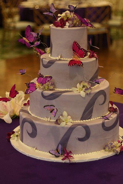 Erfly Cake