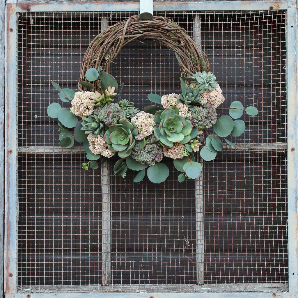 Succulent, Sedum & Silver Dollar Eucalyptus All Seasons Front Door Wre - Darby Creek Trading