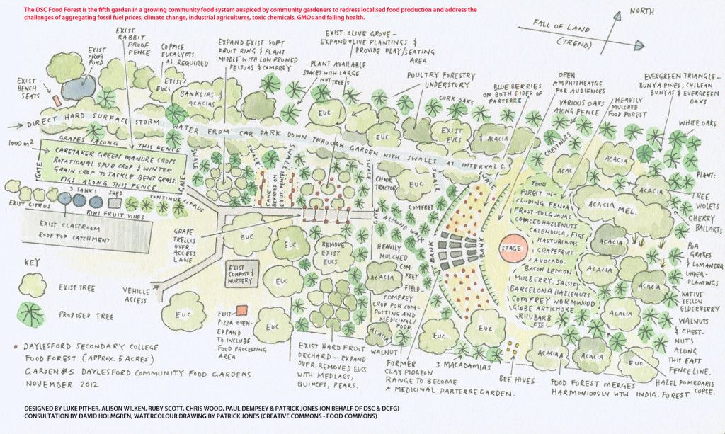 Patrick\u0027s food forest design Permaculture/Garden Project Ideas
