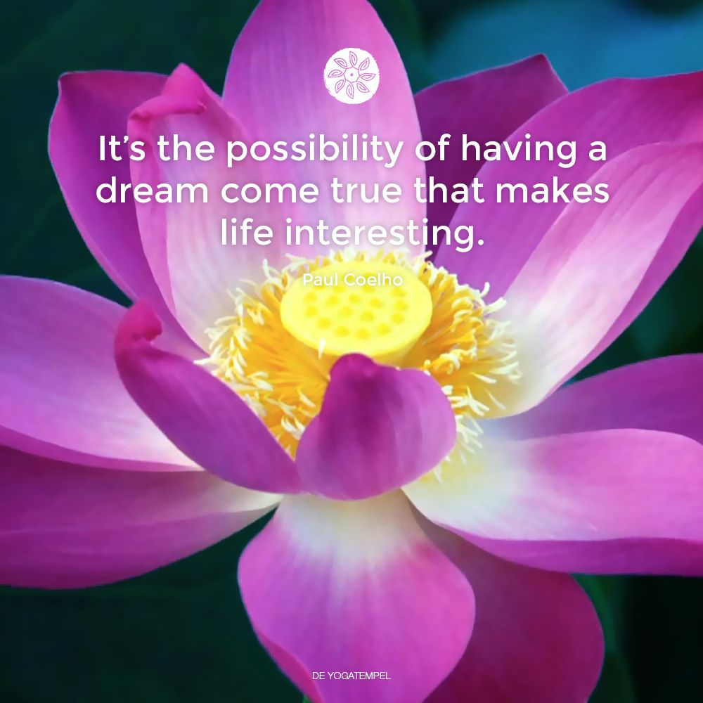 It's the possibility of having a dream come true that makes life interesting.  Paul Coelho