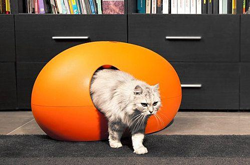 une litière pour chat novatrice et design | cat and dog