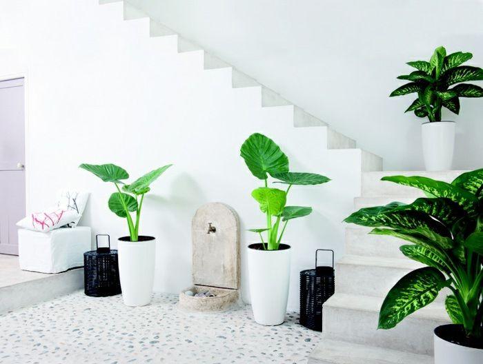99 Great Ideas To Display Houseplants Indoor Plants Decoration Houseplants Indoor Indoor Plants Plant Decor