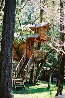 Tree House Resort Fun Southern Takllama Oregonrene And I Have Been Talking About Going To This Place Forever Tree Houses Agac Evler