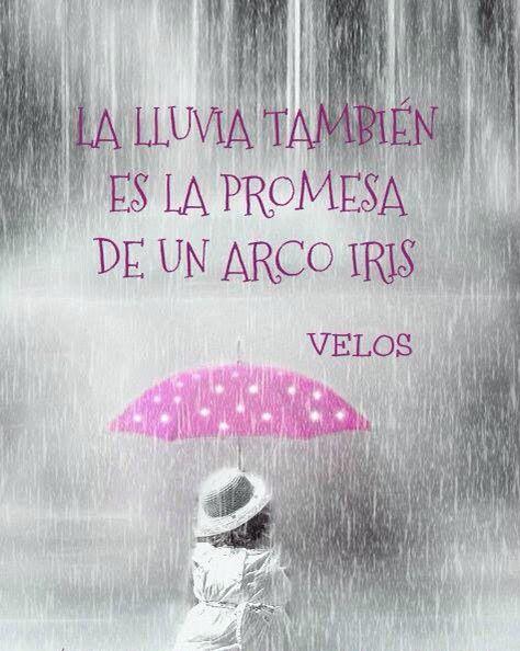 La lluvia también es la promesa de un arcoiris ... | Lluvia, Frases positivas, Pensamientos