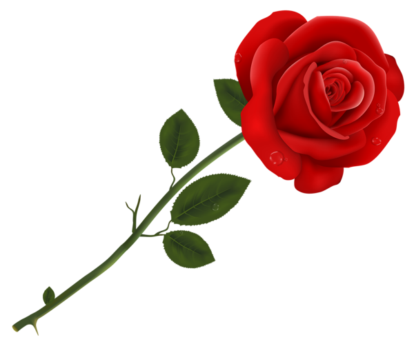 red roses - clipart. Обсуждение на liveinternet - Российский