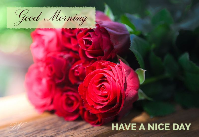 Good Morning Have A Great Day Goodmorning Roses Ecards Good