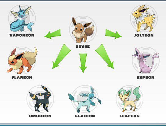 Samsung The Eevee Of Electronics Eevee Eevee Evolutions Pokemon Evolutions Chart