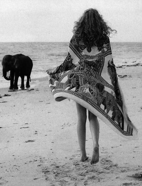 If I could walk a beach in a caftan and meet a baby elephant.... -LMT