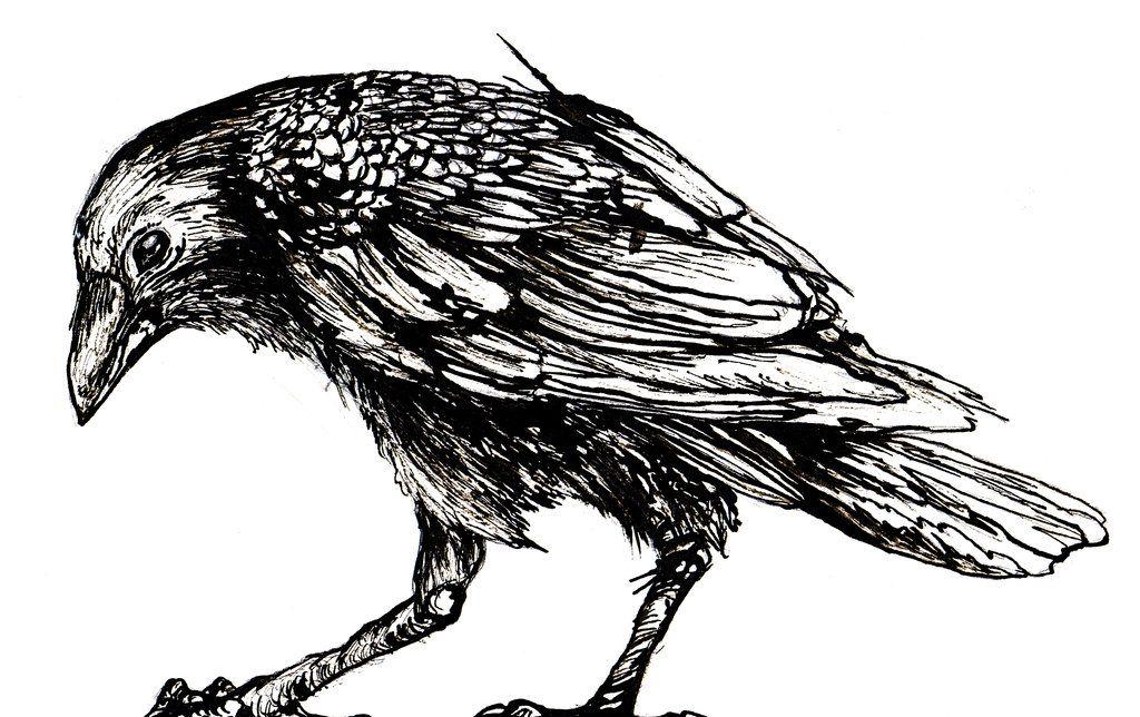 душе сердца картинка или рисунок вороны крыльце