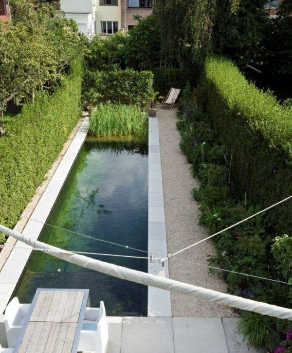 La piscine naturelle dans le jardin - avantages et conseils ...