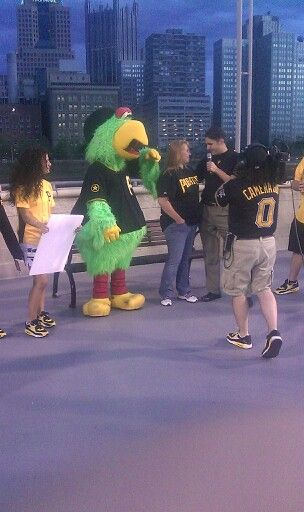 Pittsburgh Pirates Parrot