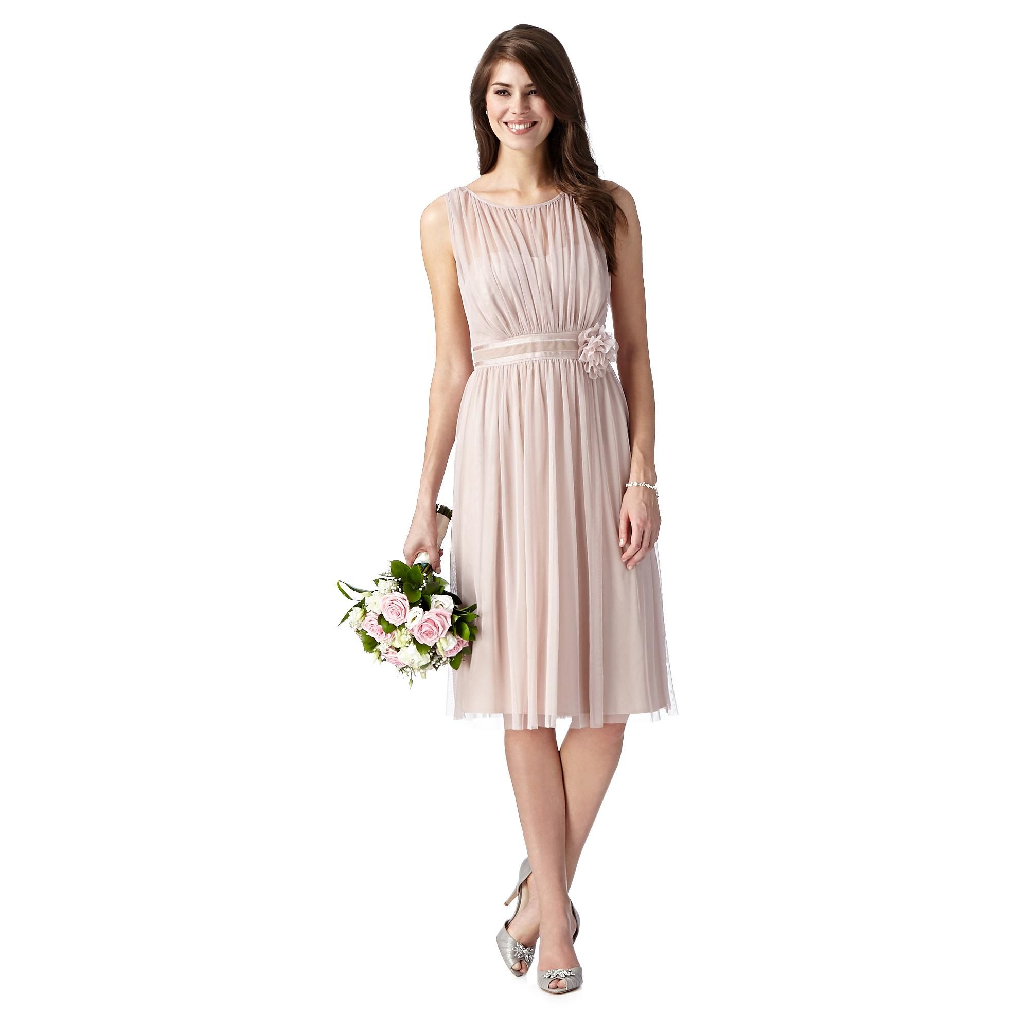 Rose mesh corsage dress bridesmaid dresses debenhams rose mesh corsage dress bridesmaid dresses debenhams ombrellifo Image collections