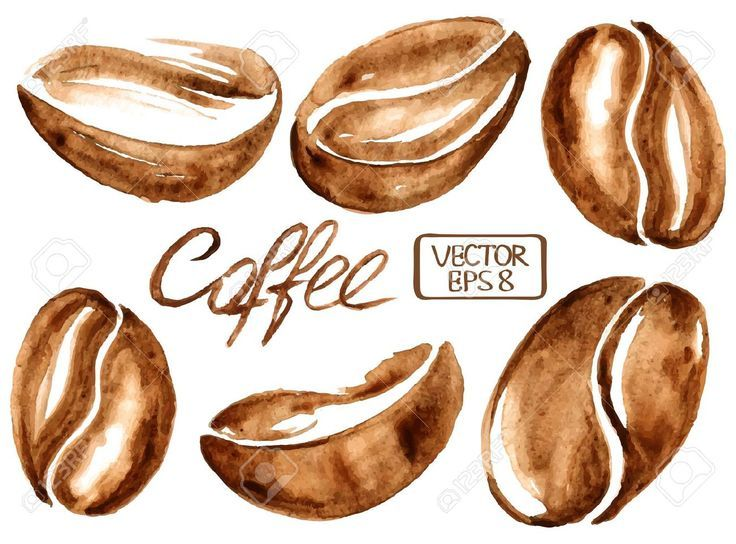 Isolated vector watercolor coffee beans icons Illustration   pen and paper