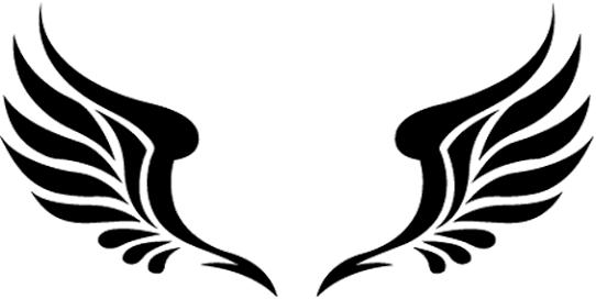 Transparent Tattoo Designs Png Transparent Dragon Tattoo Png Png Download Is Free Transparent Png Image To Explo Dragon Tattoo Dragon Tattoo Sketch Tattoos