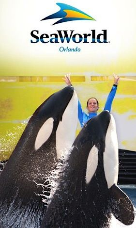 Military Discount Free Admission To Seaworld Sesame Place Or