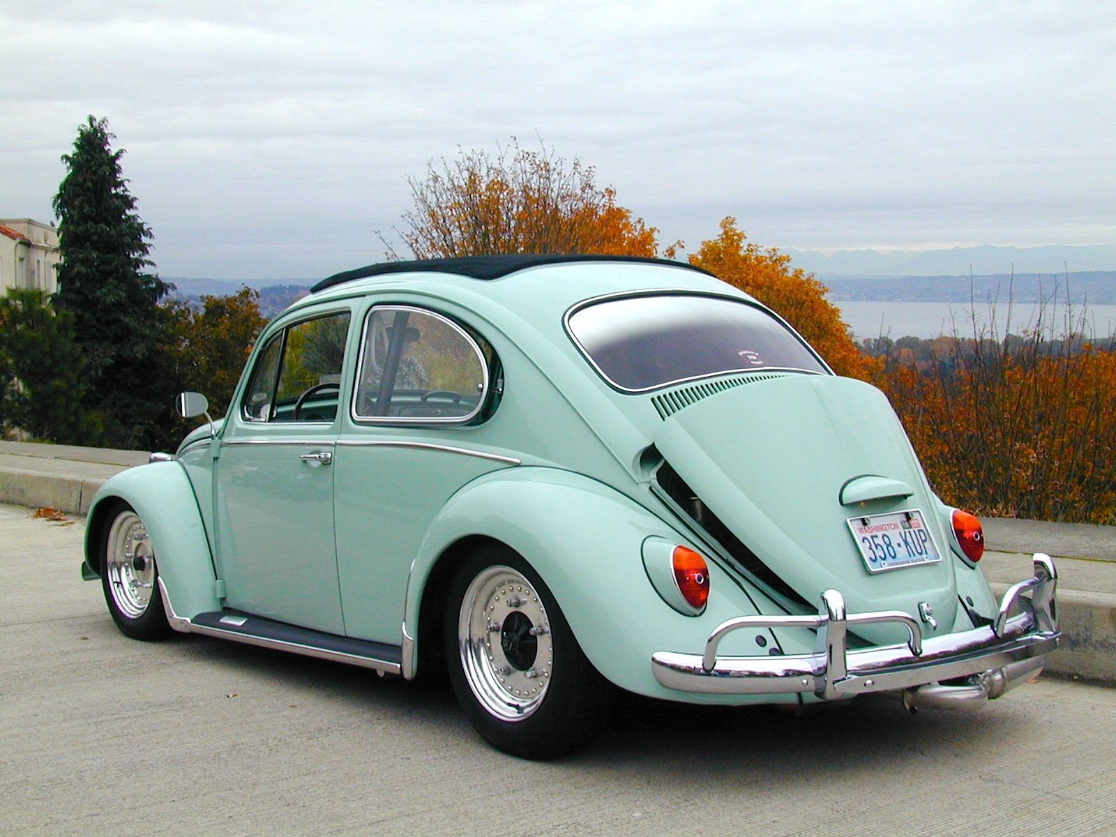 VW Beetle California Style Sweet Vee dubs