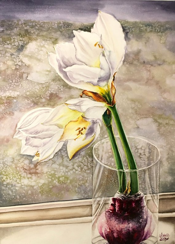 White Amaryllis In Glass Vase Watercolor Paintings Painting Watercolor Flowers