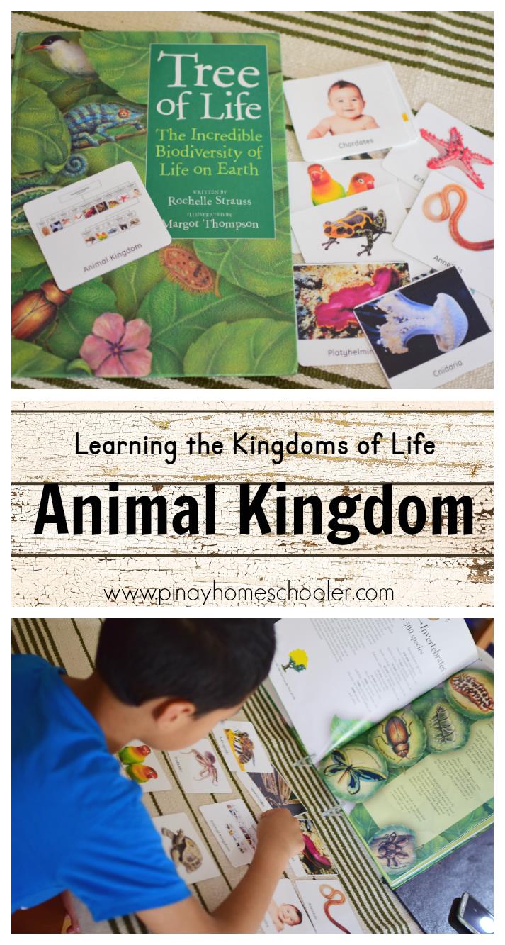 Kingdoms Of Life And The Animal Kingdom
