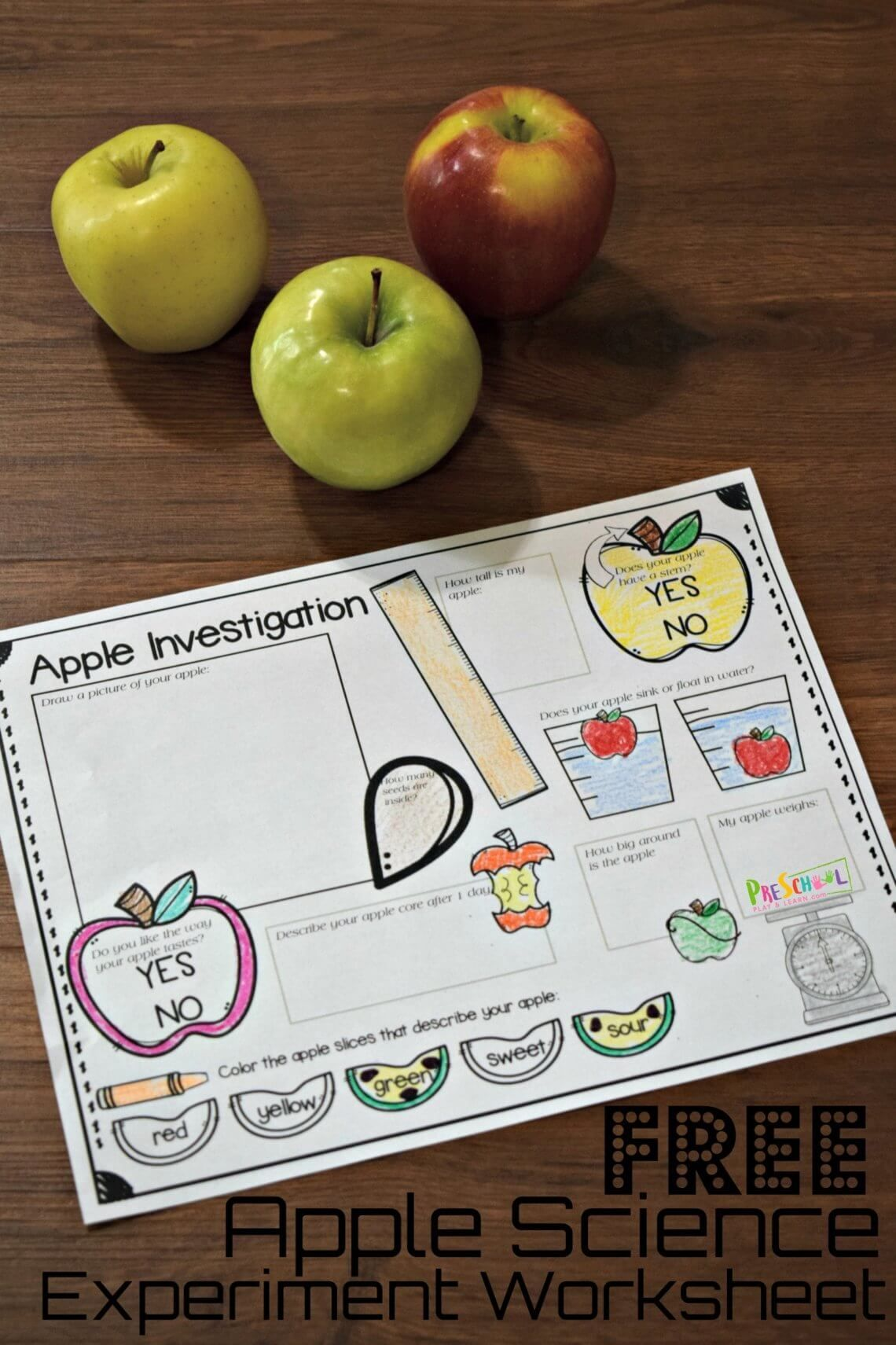 Free Apple Science Experiment Worksheet In With