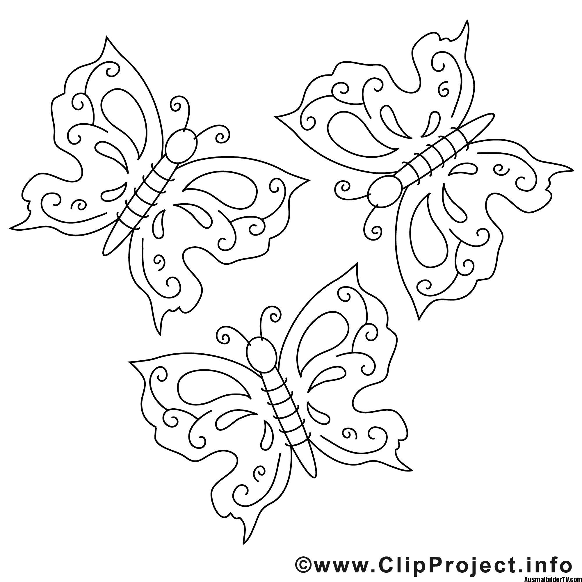 Schmetterling Malvorlage Fensterbilder Pinterest