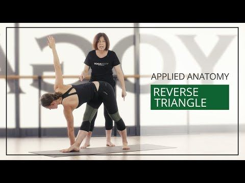 applied anatomy for yoga teachers reverse triangle
