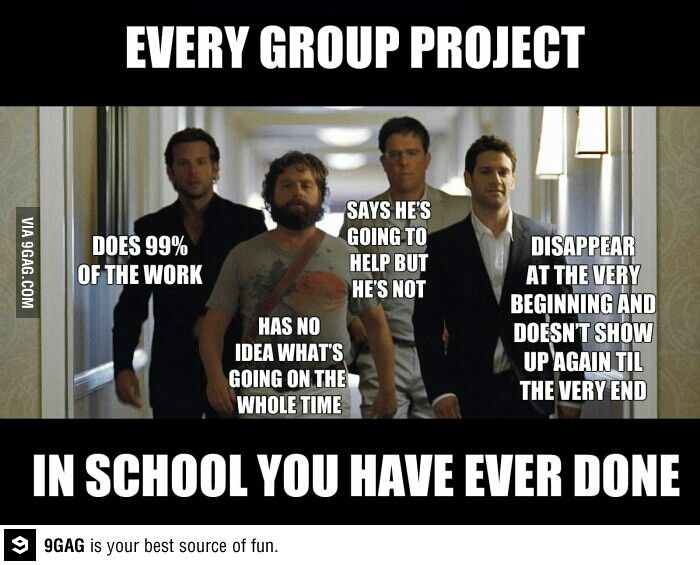 @Alexandra Stabio our science group last year