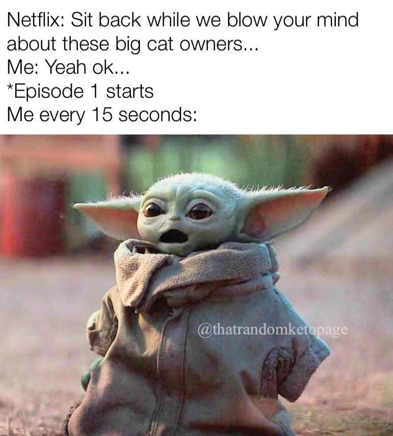 Hey All You Cool Cats And Kittens The Best Tiger King Memes In 2020 Yoda Meme Funny Relatable Memes Star Wars Memes