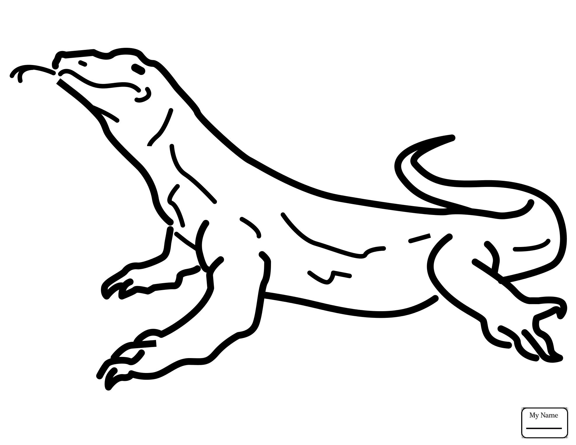 Image result for drawing a lizard | Dragon coloring page ...