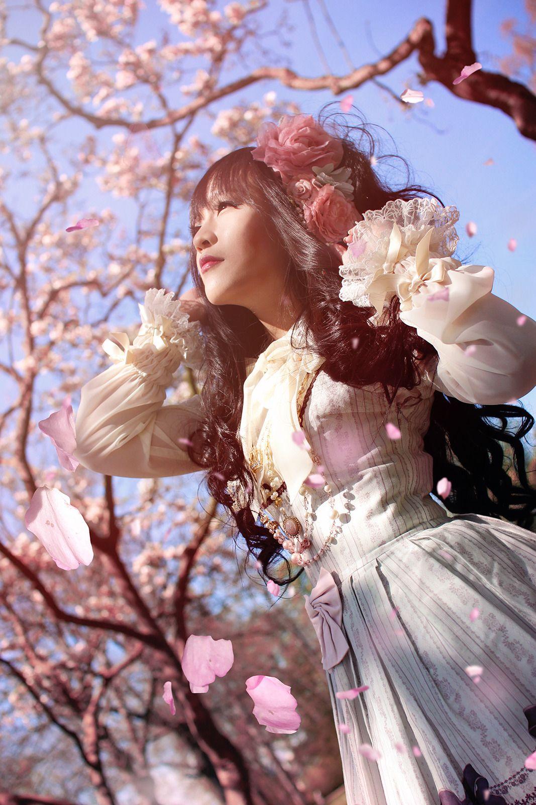 Pin On Sakura Quince