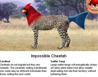 Think in English: Create your own Hybrid Animal | Avatars ...