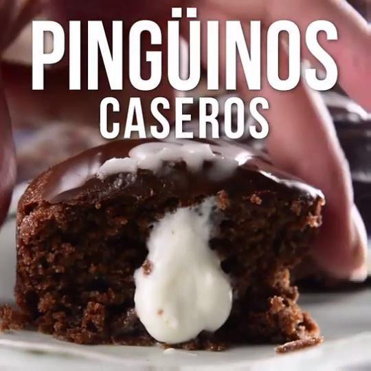 Photo of Video de Pingüinos Caseros