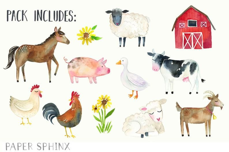 Watercolor Farm Animals Clipart Farm Clip Art Cow Horse Duck Chicken Rooster Goat Pig Baby Shower Scrapbooking Baby Animal Prints Animal Clipart Pig Baby Shower