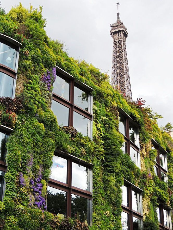 vertical garden at Musée du Quai Branly #architecture ...