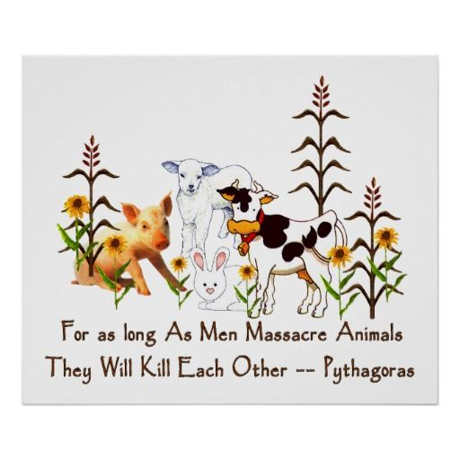 Pythagoras Vegetarian quote Poster | Zazzle.com #vegetarianquotes
