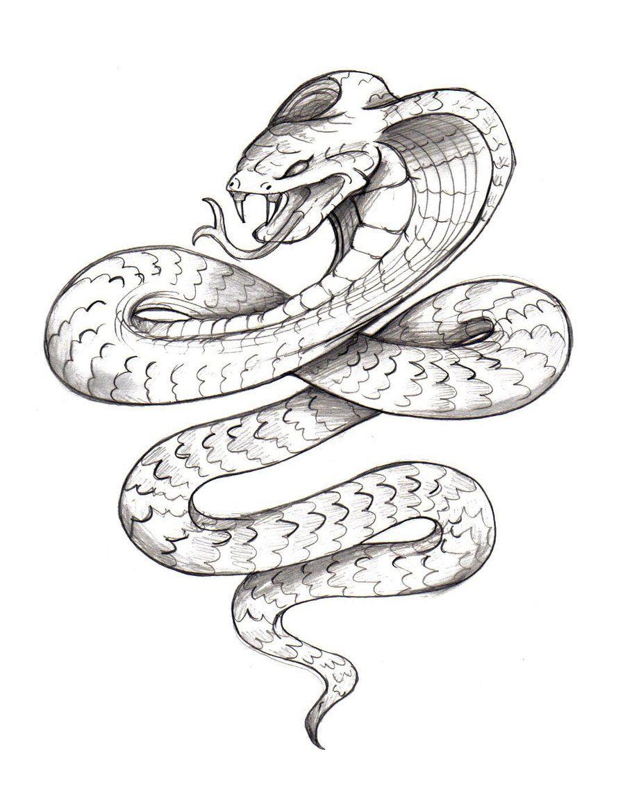 Japanese Snake Tattoos Drawings Cobra Tattoo Skeleton Drawing Top Diagram Images For Pinterest
