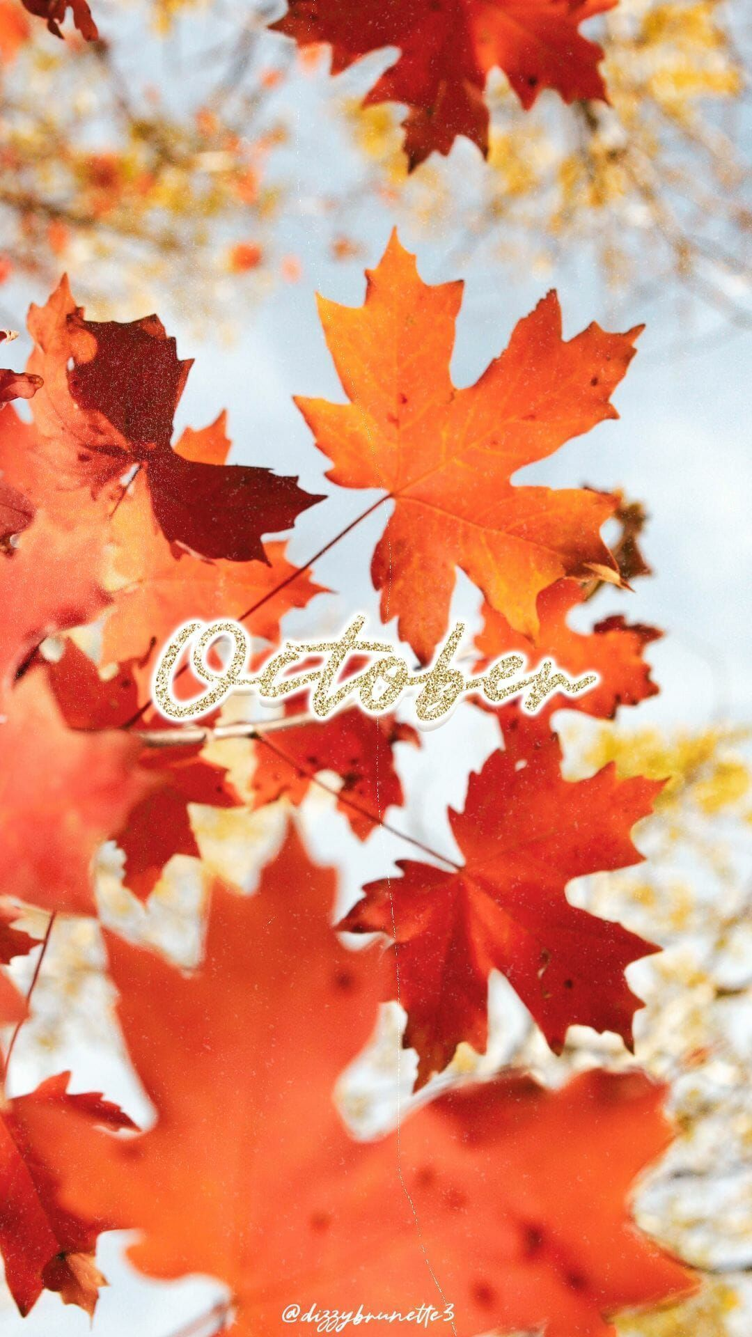 31 Free Amazing Fall Iphone Wallpaper Backgrounds For Fall Aesthetic Image C Dizzy Brunette 3 Cute Aut In 2020 Fall Wallpaper October Wallpaper Cute Fall Wallpaper