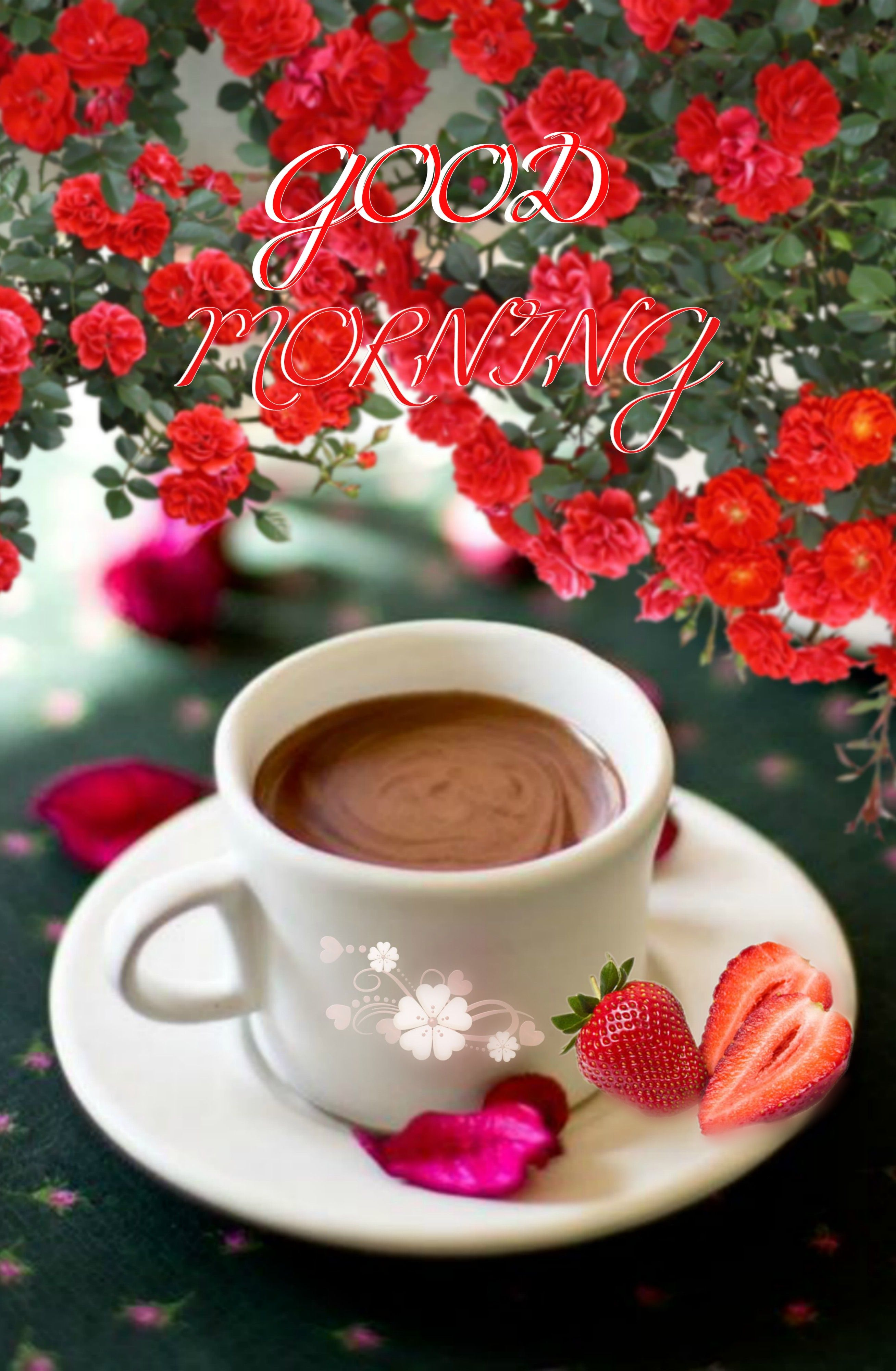 Pin by Jolanta kanarek on Good morning   Good morning inspiration ...