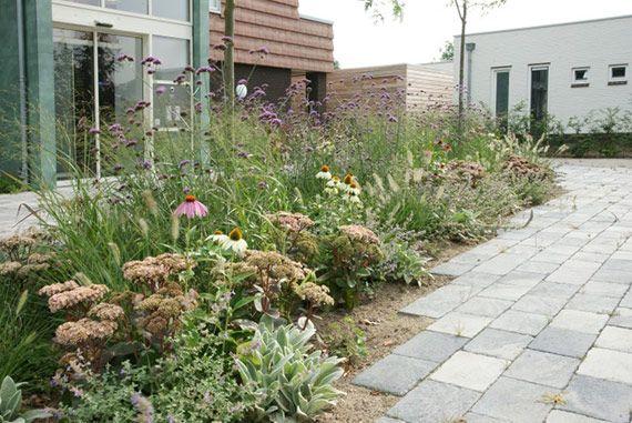 Park Als Tuin : Natuurlijke lijnen garten pinterest garden park tuin and