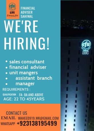 Efu Life Assurance Ltd Jobs Available In Sahiwal Sahiwal In 2020 Job Financial Advisors Job Offer