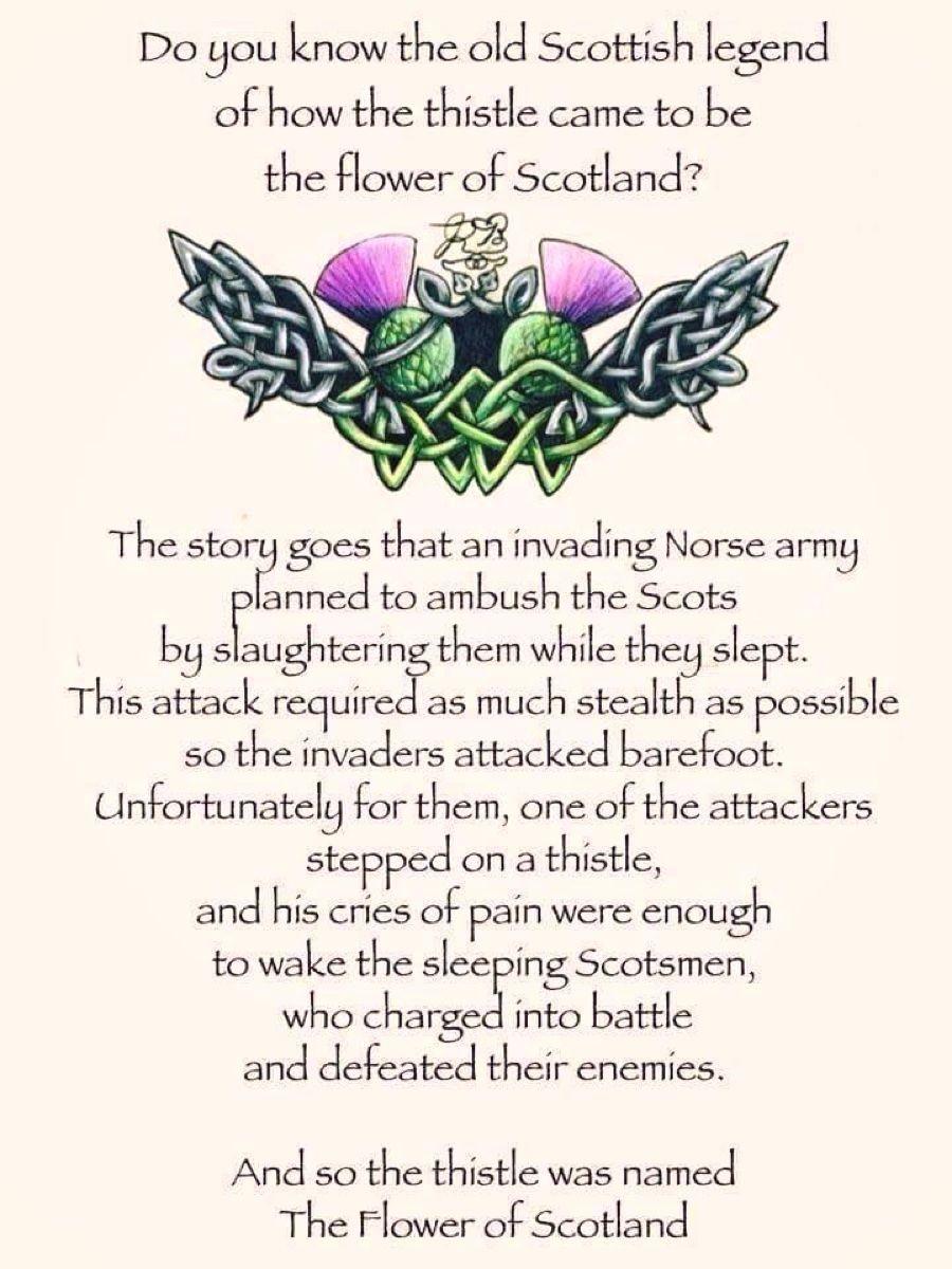 Thistle Legend Scotland history, Scotland, Scottish