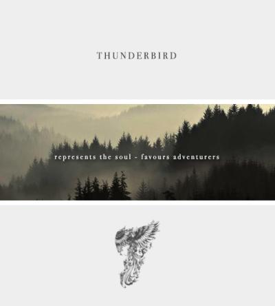Again Im No Thunderbird But THIS